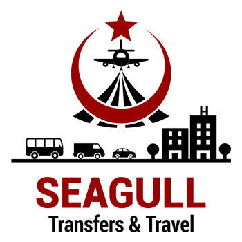Seagull Transfers